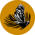 general-fund-main-icon